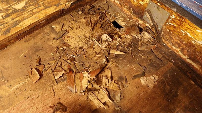 rotting floor